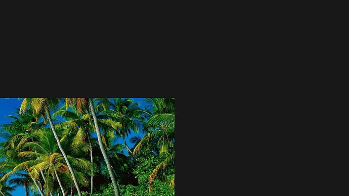Rescue_Island 2021-03-04 07-08-03-35